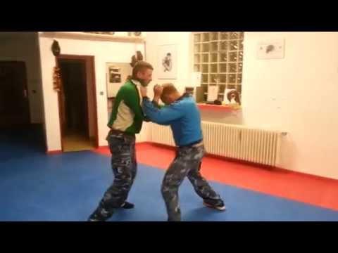 Kampfsportschule Viking  Neuendettelsau.