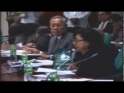 Committee on Local Government (January 26, 2015)
