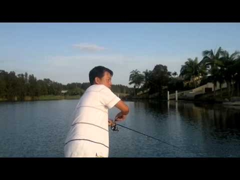  bass lure  fishing