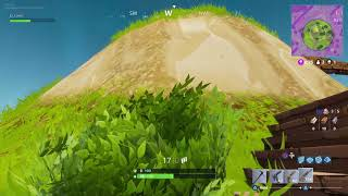 FortNite Battle Royale Bush Camping Win