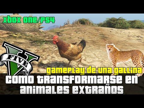 GTA V X1/PS4 - Como Transformarse en Animales y jugar con ellos | Gallina Gameplay