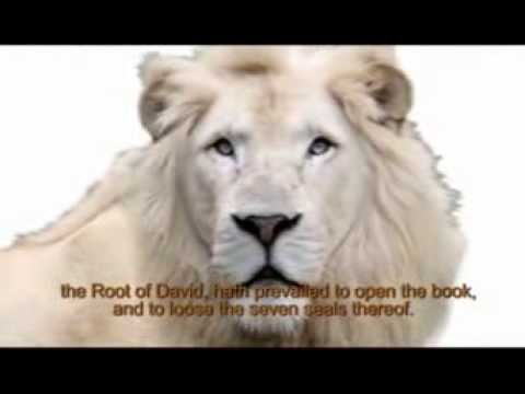 Prince - Lion Of Judah