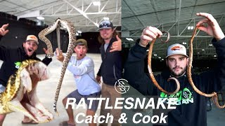 RATTLESNAKE CATCH and COOK (Venomous)