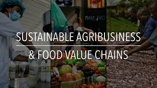 FAO Policy Series: Sustainable Agribusiness & Food Value Chains
