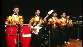 """Los Tam y Tex - """"Tikita"""""""