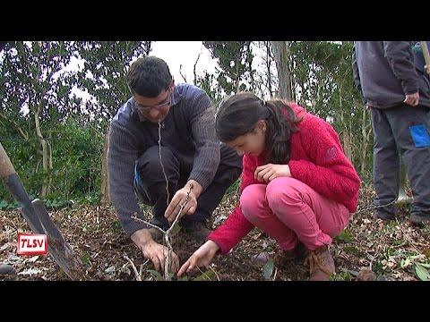 Luçon : les enfants plantent des arbres