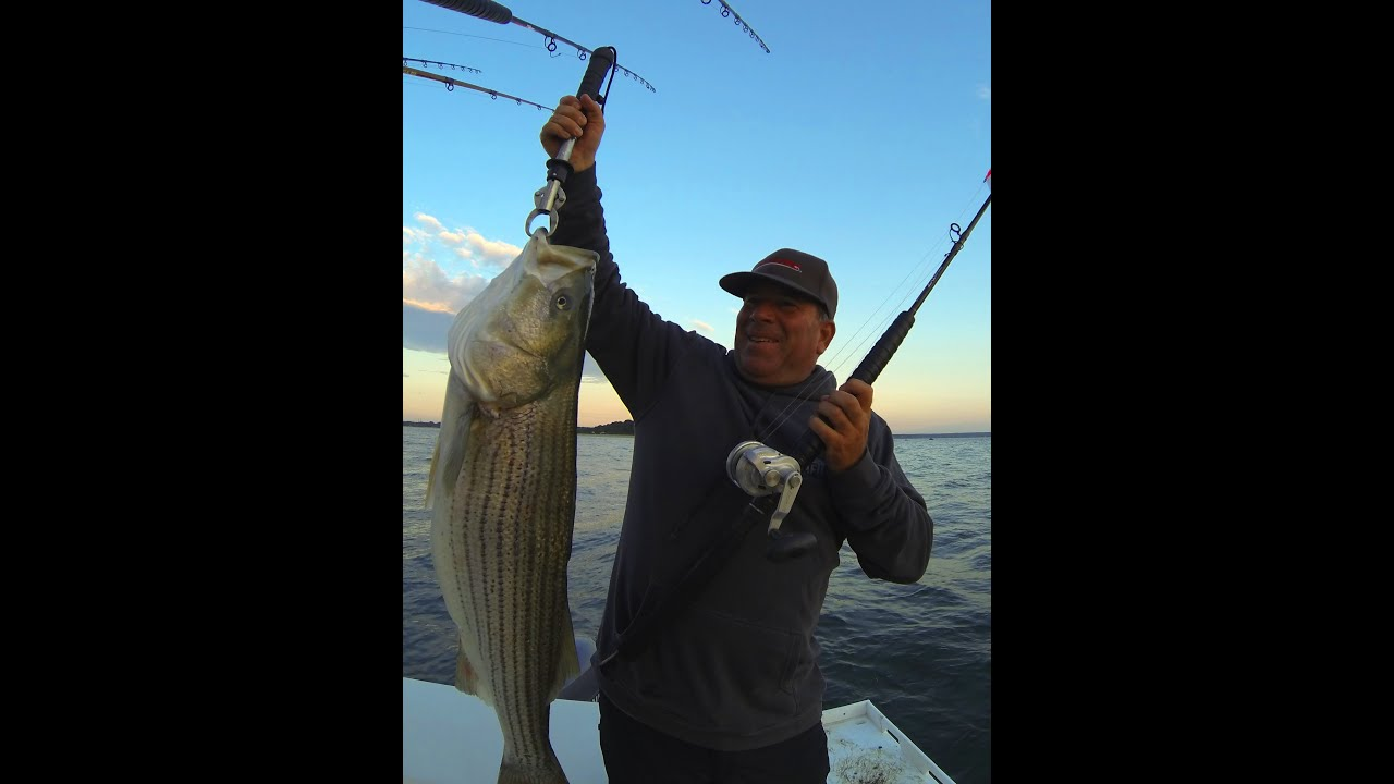 Striped bass fishing reels from accurate the best option for Best spinning reel for bass fishing