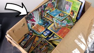 I WON THE BEST EBAY POKEMON COLLECTION EVER...?