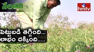 Success Story Of Natural Farming By Peddapalli Ideal Farmer | Nela Talli | hmtv