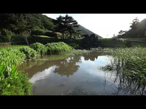 陽明山國家公園_二子坪的蛙類生態