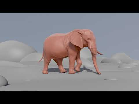 My first elefant animation