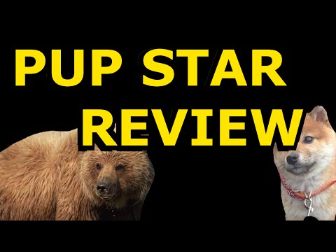 Pup Star Movie Review | Beary Serious 8