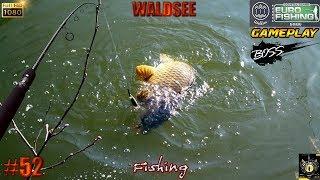 EURO FISHING WALDSEE #52 DLC NOUVEAU LAC NEW LAKE SILURE CARPE KOI ET BOSS - jeu de pêche 2018