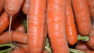 Zanahoria para adelgazar, plantas medicinales