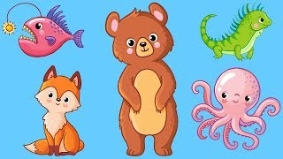 Animals for Kids! Learn Animal Names for Toddlers