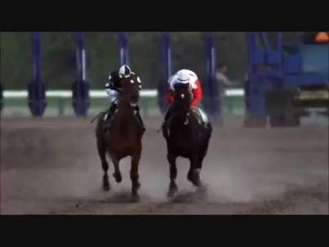Скаковая лошадь Резвая (последние минуты жизни)