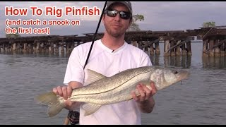 How to Rig a Pinfish for Catching Snook, Tarpon, Redfish, and Grouper