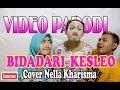 Video Parodi bidadari Kesleo Cover Nella Kharisma