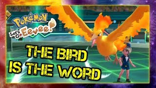 Pokemon Lets Go Pikachu and Eevee Singles Wifi Battle - The Bird is the Word
