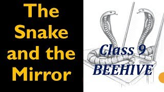 The snake and the mirror NCERT Class 9 English Explanation, difficult word meanings