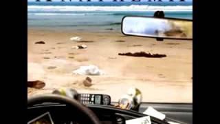 Watch Anathema Panic video