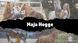 MUSTANG MAKEOVER 2019 - Team Maja (TAG 4577) - Update 1