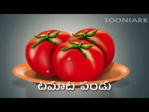 Telugu Learning's | Balasiksha | Kuragayalu| By Tooniarks video