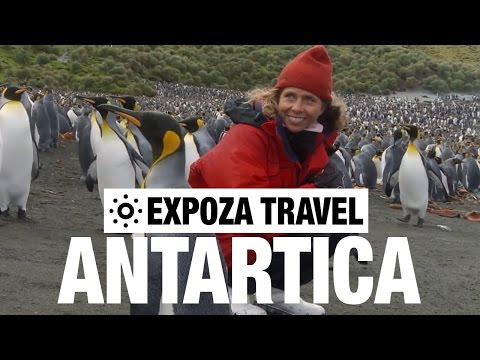 Antarctica Vacation Travel Wild Video Guide