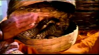 Vanaja Girija -  Ramki, Khushboo, Mohini, Napoleon - Tamil Comedy Movie