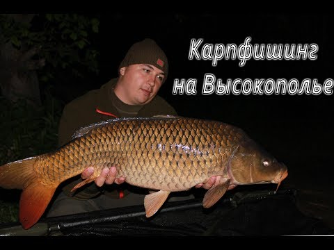 николаев рыбалка на карпа