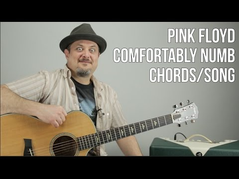 Pink Floyd - Comfortably Numb - Chords, Song Tutorial - How To Play On Guitar