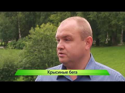 """""""Город"""" выпуск 10.08.2017"""