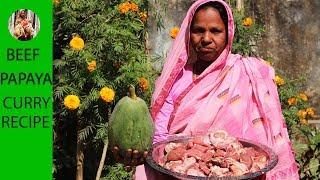 Delicious village food Beef papaya recipe   Beef green papaya curry recipe