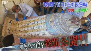 世界ふしぎ発見!渋谷で解き明かす!エジプト黄金都市の発見!!🈖🈑