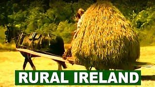 Farm life in rural Ireland