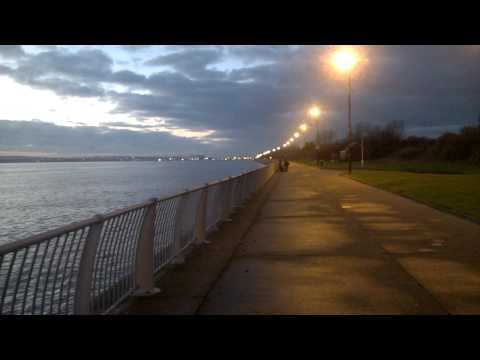 Will mcgookin Sea fishing River Mersey