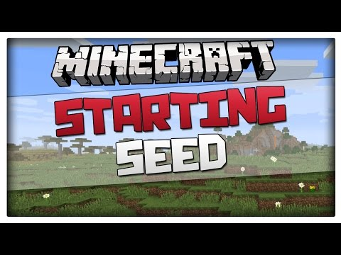 Minecraft 1.8 Great Starting Seed - Village and 6 biomes! (For minecraft 1.8 and
