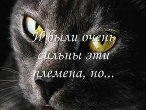 http://i.ytimg.com/vi/DFwzNubn_2U/hqdefault.jpg