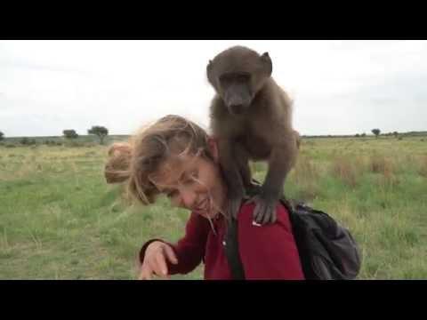 Бабуины Джоли-Питт и Регина Тодоренко! Орёл и Решка