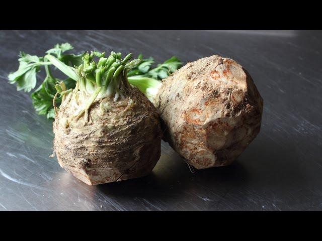 Celery Root Puree - How to Make Celeriac Puree