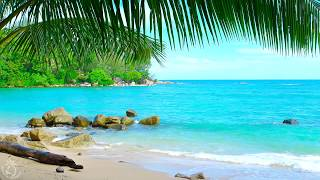 Tropical Island Beach Ambience Sound Thailand Ocean Sounds For Relaxation And Holiday Feeling
