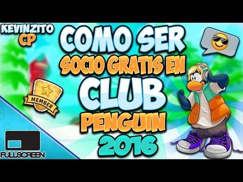 como ser socio gratis en club penguin 2013 octubre