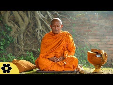 Download Tibetan Meditation Music, Soothing Music, Relaxing Music Meditation, Binaural Beats, ✿3186C