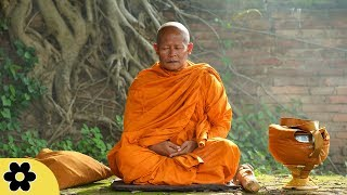 Tibetaanse meditatiemuziek, Ontspannende Meditatie Muziek, Yoga, Binaurale Beats, ✿3186C