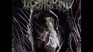 Watch Fleshgrind Hatred Embodied video