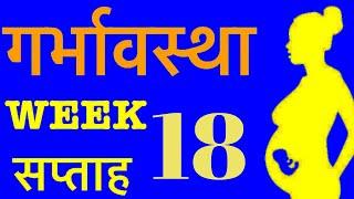 Pregnancy week 18 in Hindi | गर्भावस्था सप्ताह 18 | Symptoms, developments & tips