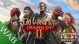 Divinity Original Sin 2 - Worthabuy?