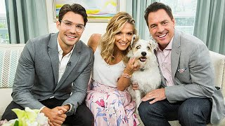 Love at the Shore satr Peter Porte and Happy the Dog - Hallmark Channel