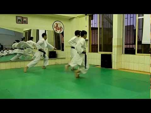 Kata Heian Shodan, Nihon Karate Do, Entrenamiento video