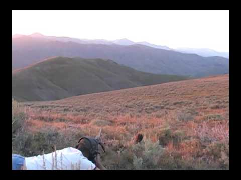 Long Range Shooting 300 Ultra Mag. Long Range Hunting